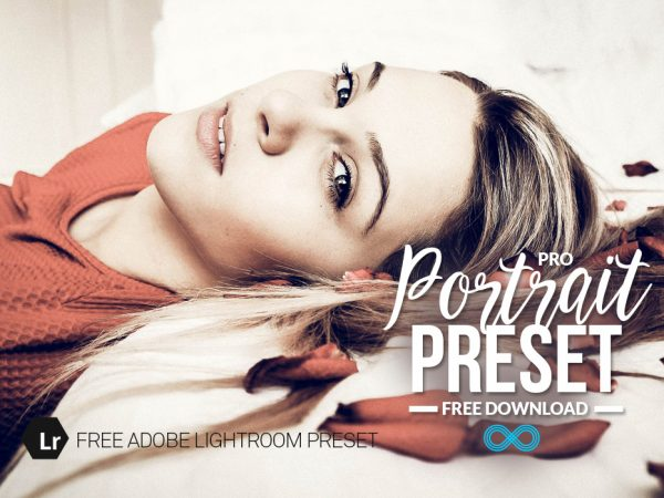 Free Professional Portrait Lightroom Preset