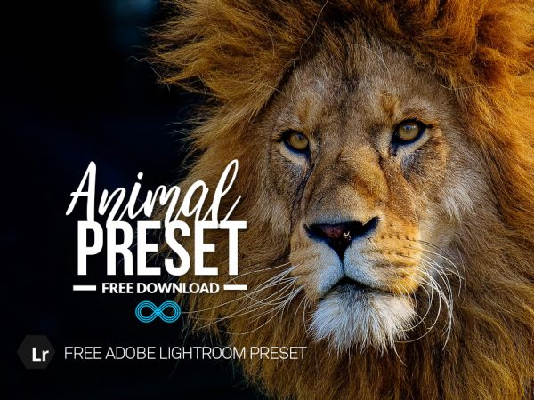 Free Animal Lightroom Preset